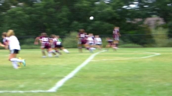 Haley Andrews goal lifts Hawks, 2-1