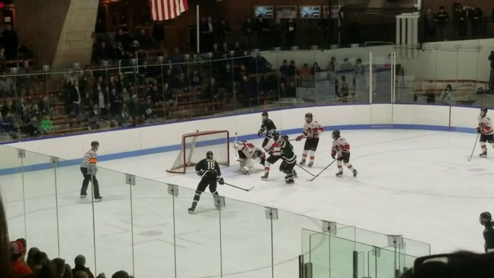 Hockey: Watertown-Pomperaug falls in semifinals