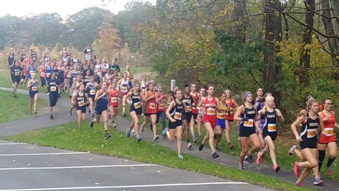 NVL cross country championships