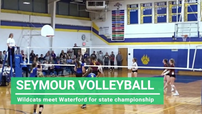 Seymour volleyball plays for state championship