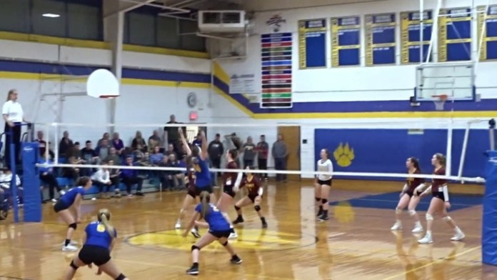 Seymour volleyball in semifinals