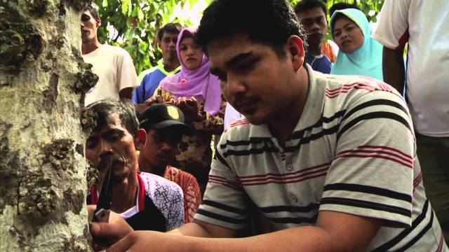 Indonesia: A Chance for Chocolate