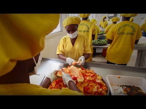 From Dakar to Paris: Gourmet Products Sustainably Produced in Senegal