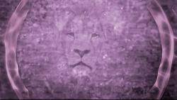 Lion Worship Motion Video
