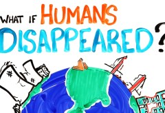 Featured Vid #8 – What If Humans Disappeared?