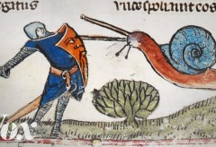 Featured Vid #467 – Why Knights Fought Snails in Medieval Art