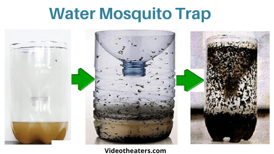 Water-Mosquito-Trap