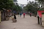 Viet-Hanoi-4