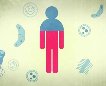 Анимација: Околу 66% од ромското население секојдневно се соочува со некој здравствен проблем