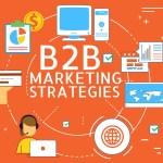 B2B Marketing Strategies, VidLyf.com