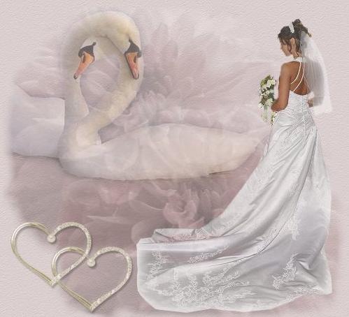 bride-22788