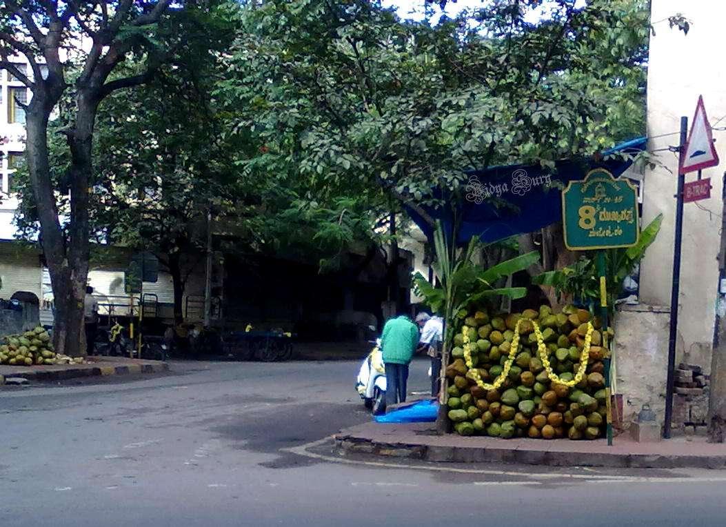 Vidya Sury Personal Responsibility coconut