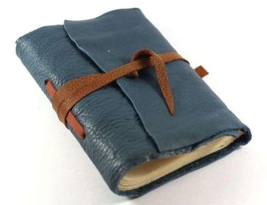 diary writing vidya sury