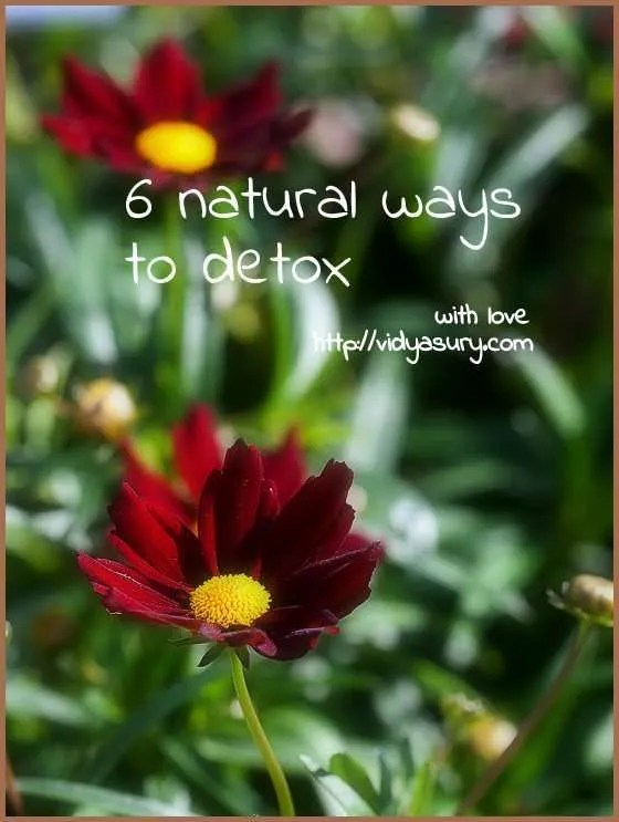 natural ways to detox vidya sury