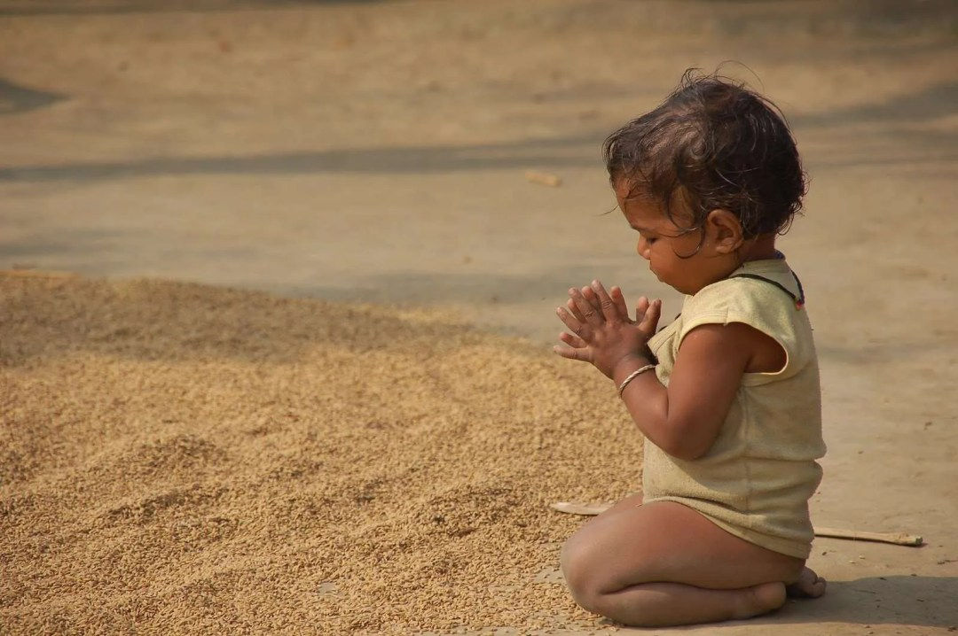 gratitude vidya sury