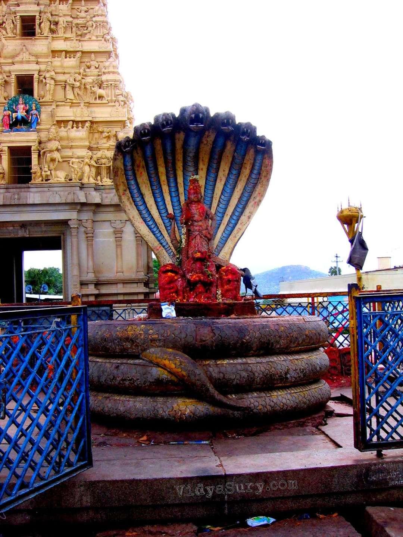 Ghati Subramanya Temple Vidya Sury