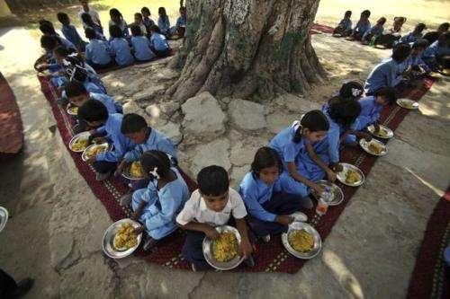 feed a child vidya sury
