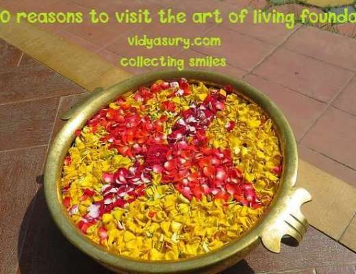 art of living 20 reasons to visit