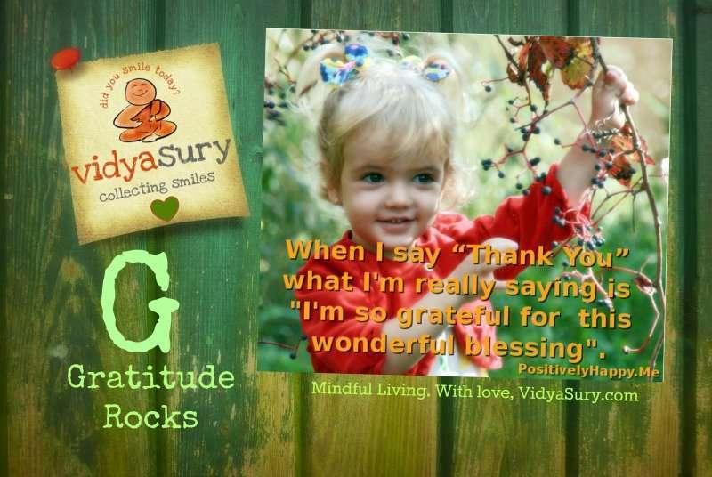 Gratitude Rocks Vidya Sury
