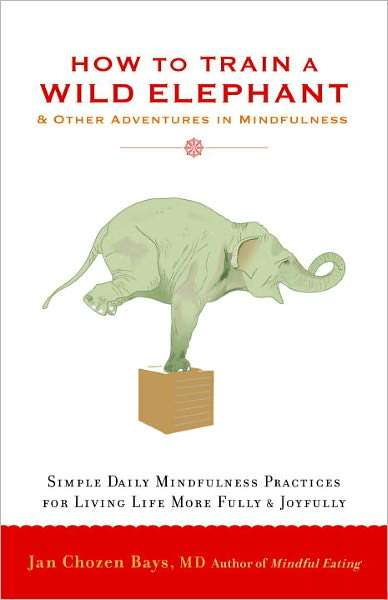 Book review How to Train a Wild Elephant-And Other Adventures in Mindfulness