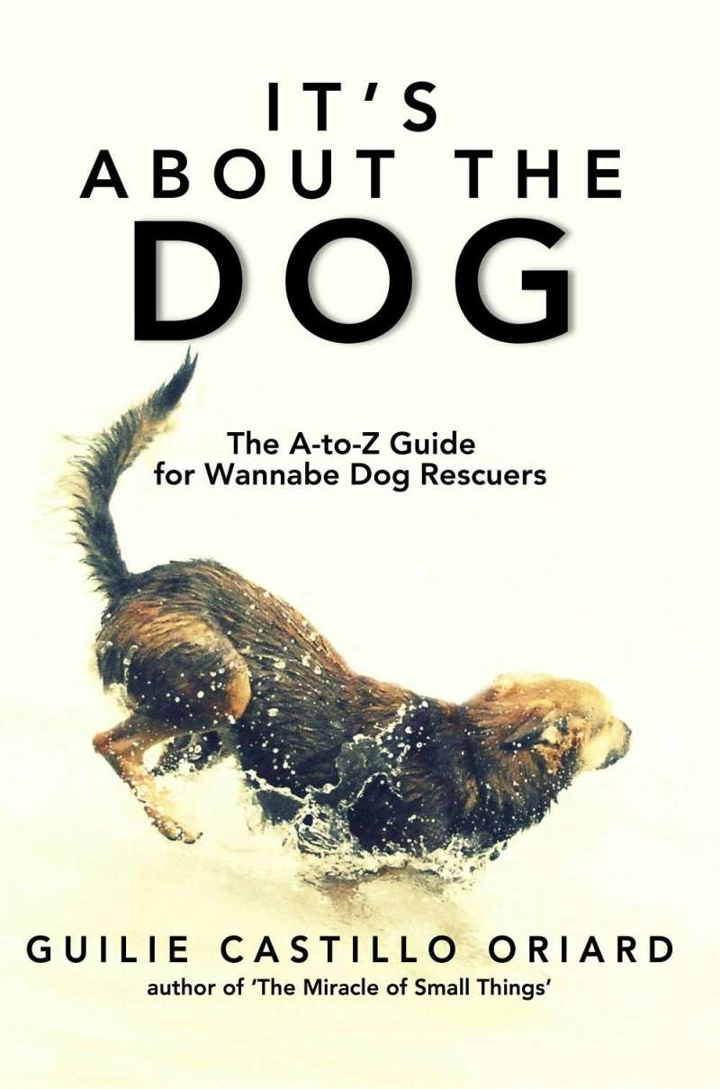 The Zen of being more dog--It's about the dog. The dog book blog tour #Zen #dogs