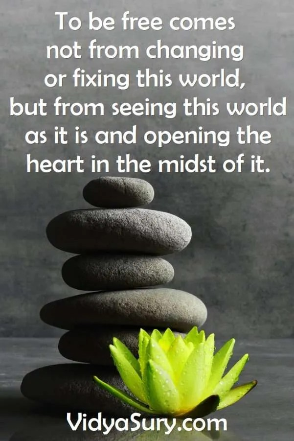 To be free comes not from changing or fixing this world, but from seeing this world as it is and opening the heart in the midst of it. #mindfulness #inspiringquotes #lifequotes