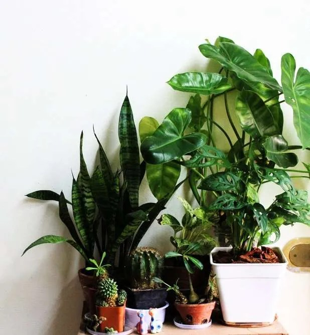 easy diy home decor hacks to save money