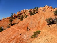 Red Canyon USA