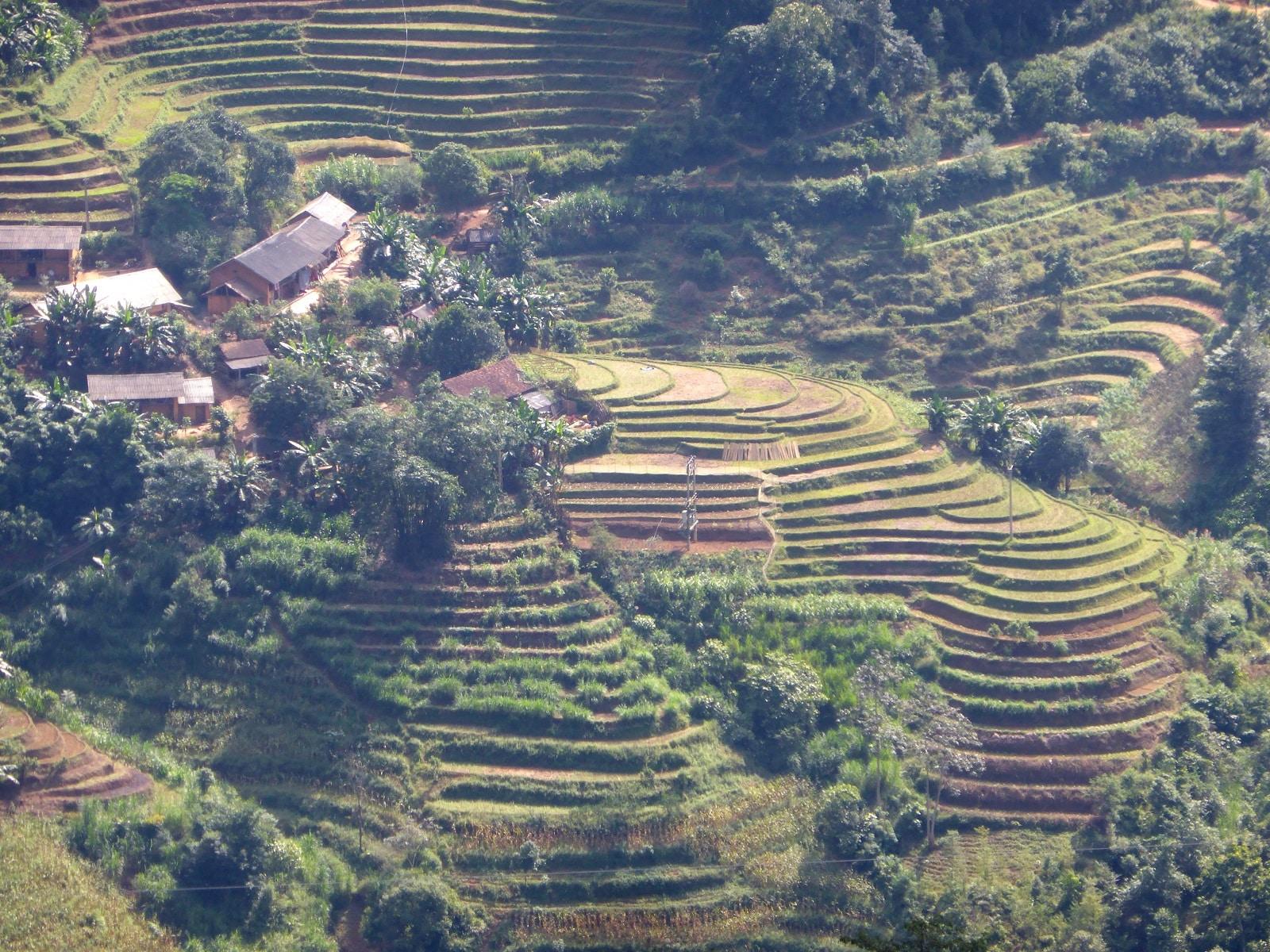 Road-trip dans les rizières au Nord du Vietnam