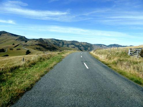 l'île du Sud-Akaroa (8)