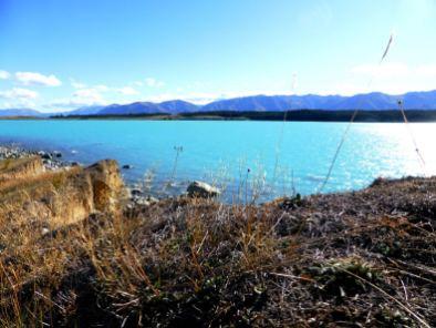 Pukaki Lake-île du Sud