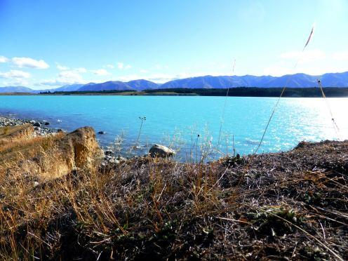 l'île du Sud-Pukaki Lake (2)