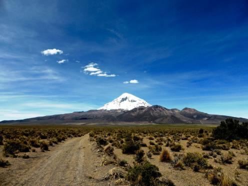 Parc National de Sajama-Bolivie (16)