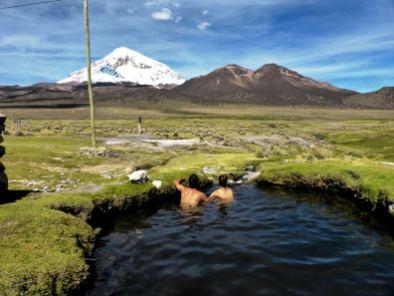 Sources chaudes face au volcan Sajama-Bolivie