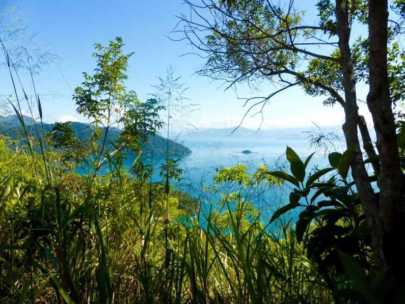 Balade jungle Ilha Grande-Brésil