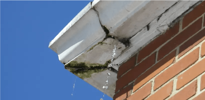 Gutter problem: Roofing issues