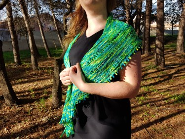 shawl-hedgehob-fibers-rosa-rosae-mam-zelle-flo-morue-bounce-vert-4
