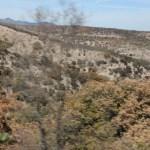 de camino al cerro del Cubilete