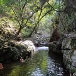 Piscinas naturales en el trek de la Ciudad Perdida de Colombia