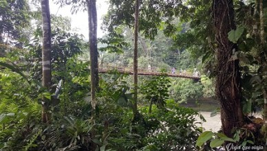 Otro puente en Putumayo