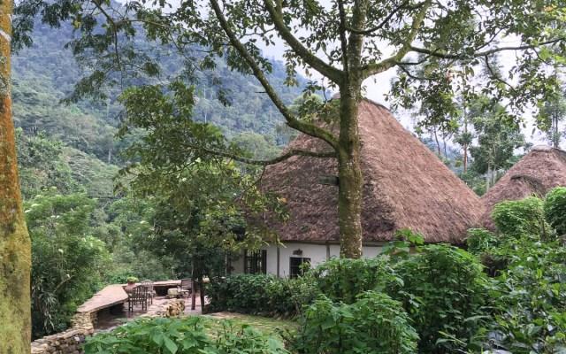 Blick auf das Haupthaus und den Bwindi Forest
