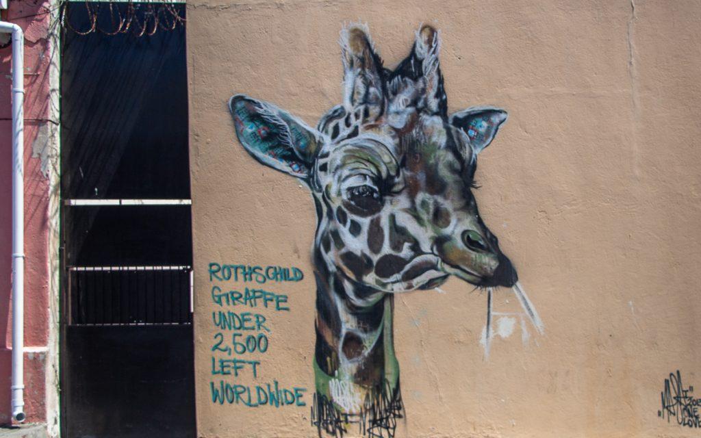 Street art Woodstock Kaapstad