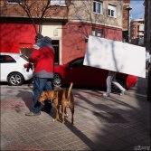 Rojo con pladur y perro