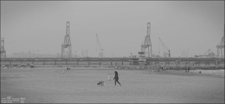 Paseando al perro en playa gris