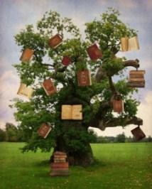 pomul cunoasterii