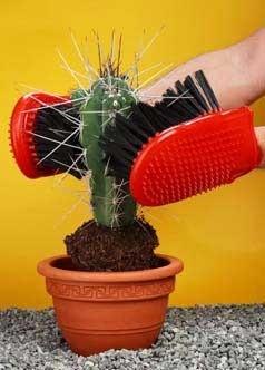 manusi pentru cactusi