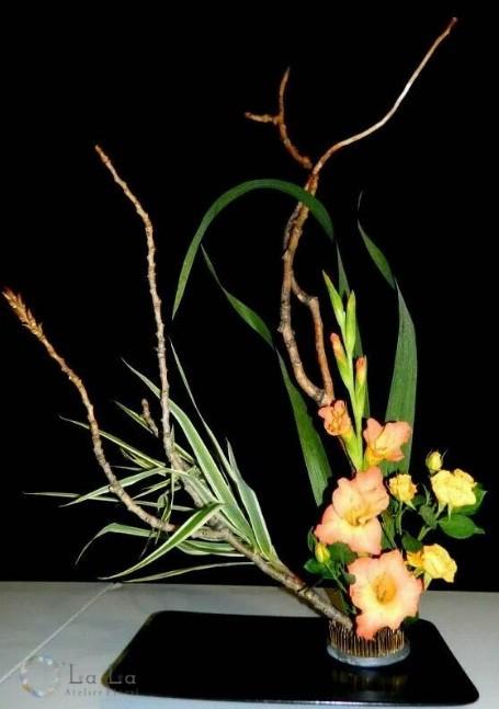 flori 5