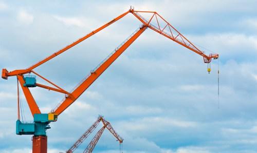 dsc_1952-1920-two-cranes-vienhoang-com