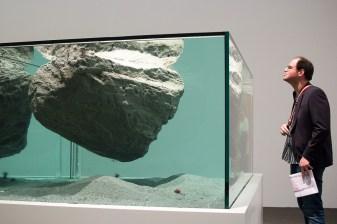Pierre Huyghe, Cambrian Explosion, art Basel 2015, photo: Kristina Kulakova