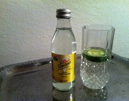 Hendricks Gin Tonic